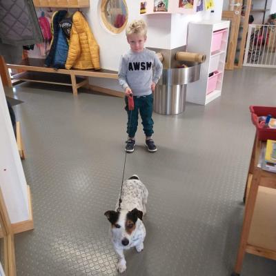 Visite d'un chien en classe