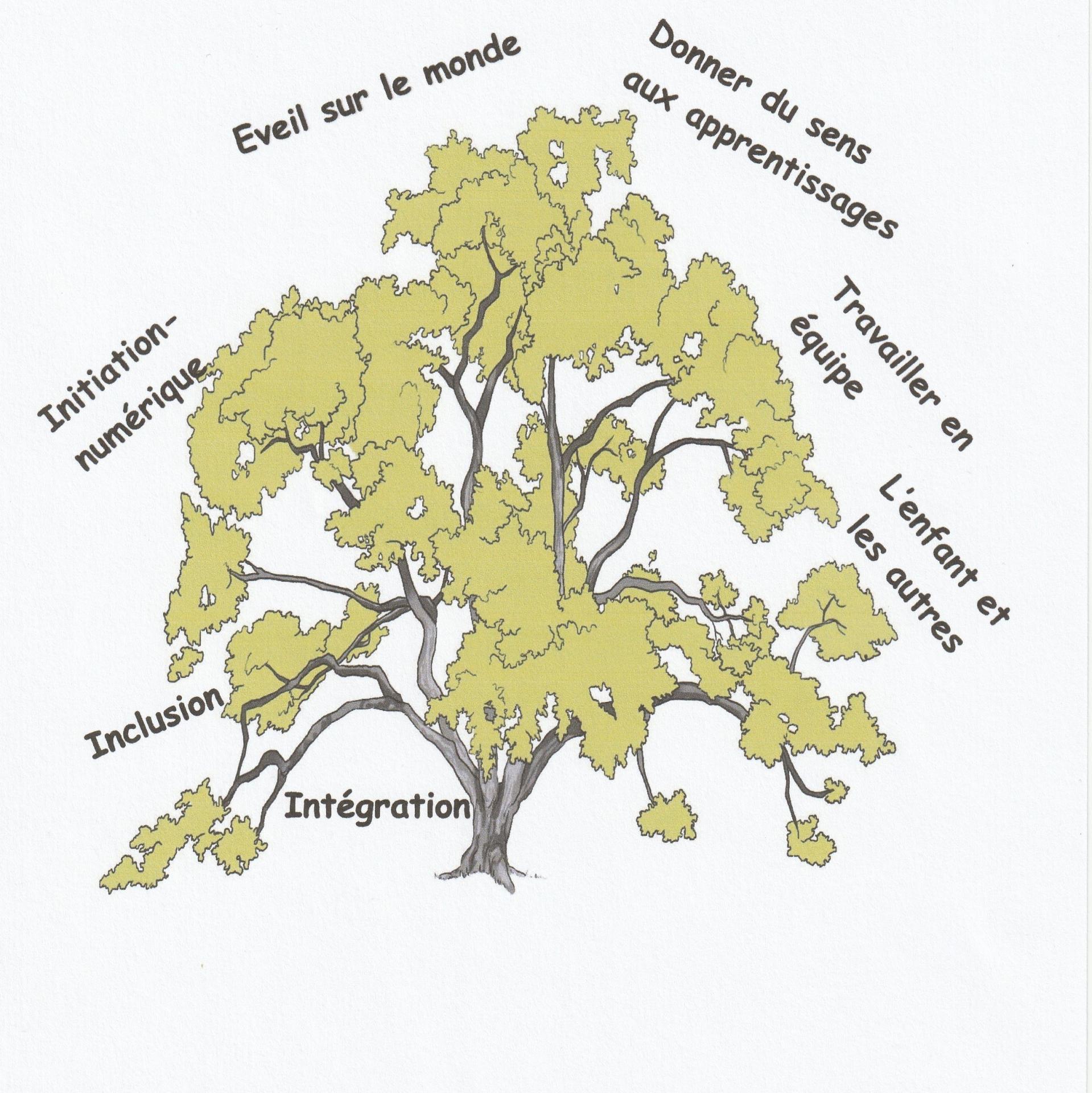 Projet pedagogique arbre